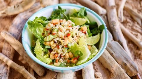 Receita Low Carb - Salada de Pepino e Papaia com Arroz Selvagem