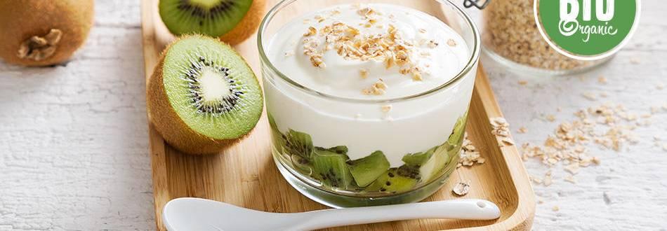 Receita Bio | Iogurte Regulador